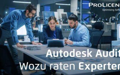 Autodesk Audit – Wozu raten Experten?
